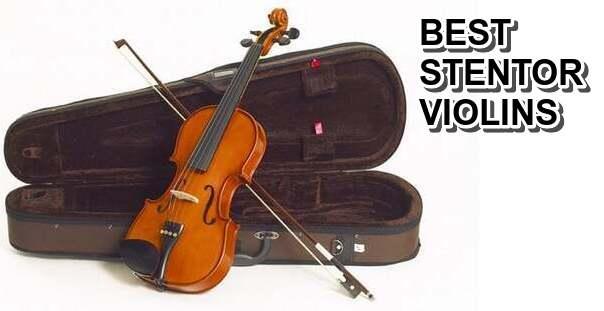 Best Stentor Violins
