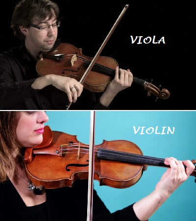 Playing Difference Between Violas and Violins