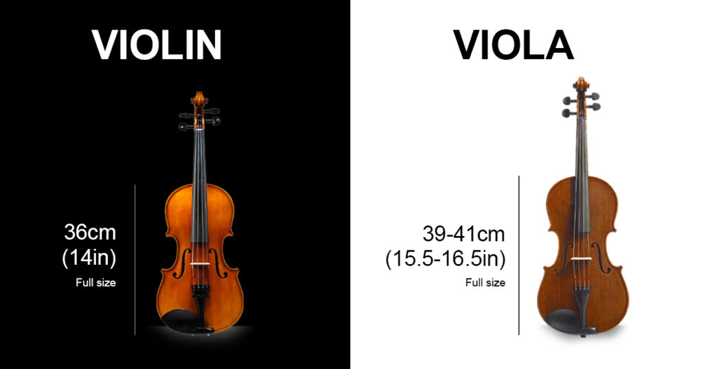Size Difference Between Violas and Violins