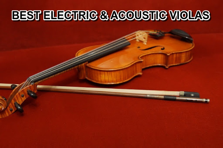 6 Best Electric and Acoustic ViolasReview