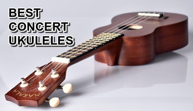 6 Best Concert Ukuleles Review